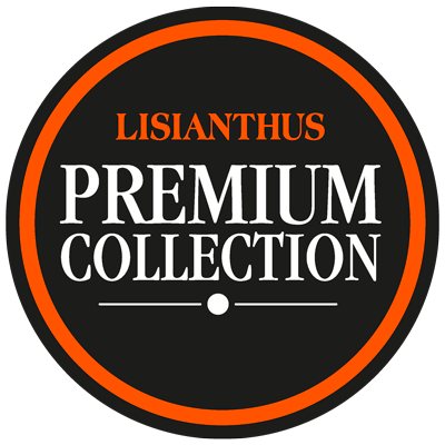 Premium Collection logo
